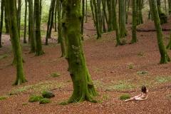 Landscape 2005