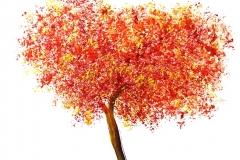 alberino-rosso-2