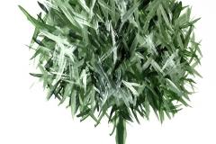 verde-piccol-1
